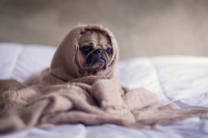 スマホ 寝る時 寝室 眠れない 睡眠